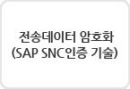 전송데이터 암호화 (SAP SNC인증 기술)