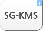 D'Amo SG-KMS